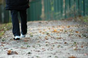 Walk_Away___LiE_by_Shraka